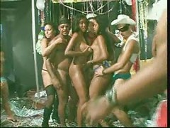 Large Brazilian Fuckfest