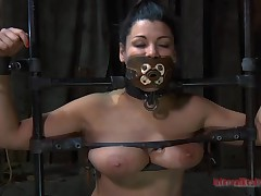 Gal acquires their way twat gratified while inside a cage