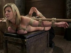 Large tittied Sara Jay acquires toyed plus harrowing with a mousetrap